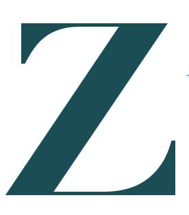 Zorro Inc. Filmproduktion